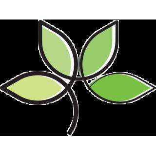 Jednodruhové byliny