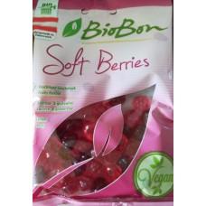 Cukríky lesné ovocie bez želatíny BZL BIO 100g Biobon