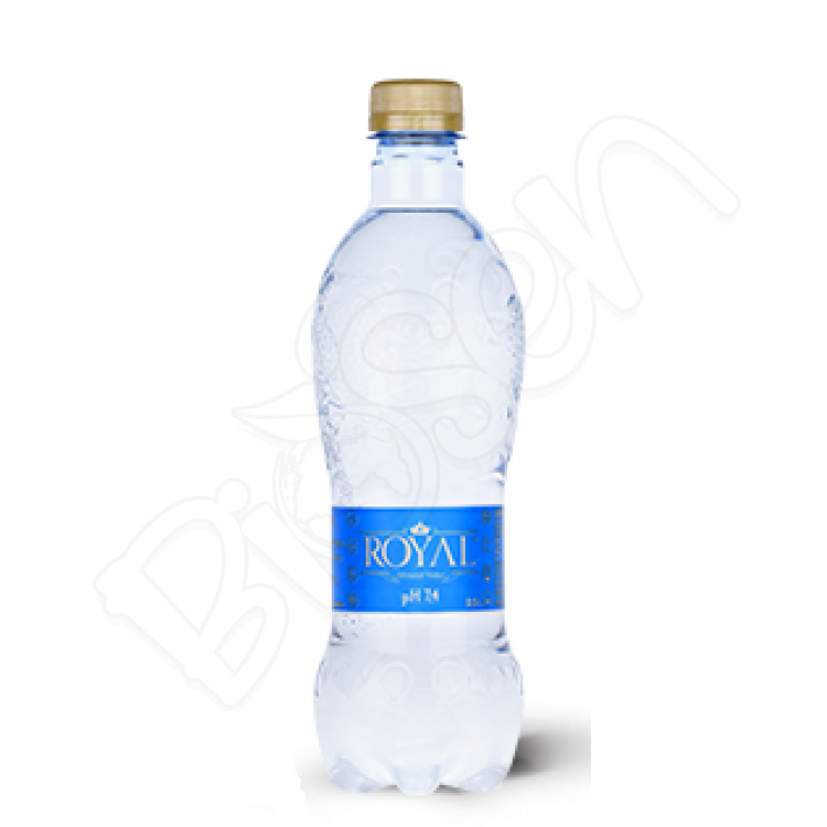 Mineral Water pH 7,4 0,5l Royal water