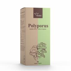 Polyporus - 40% polysacharidov 90ks Serafin